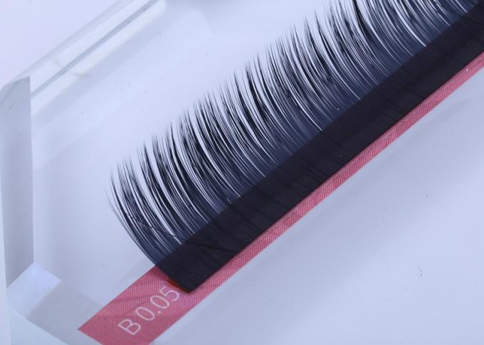 Camellia Individual 3D Eyelash Extensions 0.05mm Multi Lengths One Row Black Color