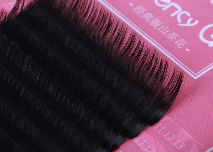 Volume 3D Eyelash Extensions PBT Material 0.05mm Thickness Private Label