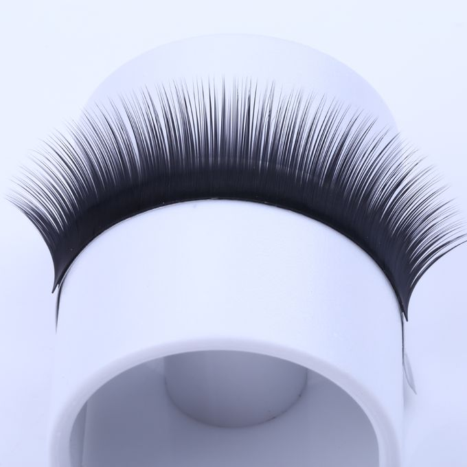 Blooming Lashes Camellia Eyelash Individual Extensions Synthetic Hair 0.07mm Thickness